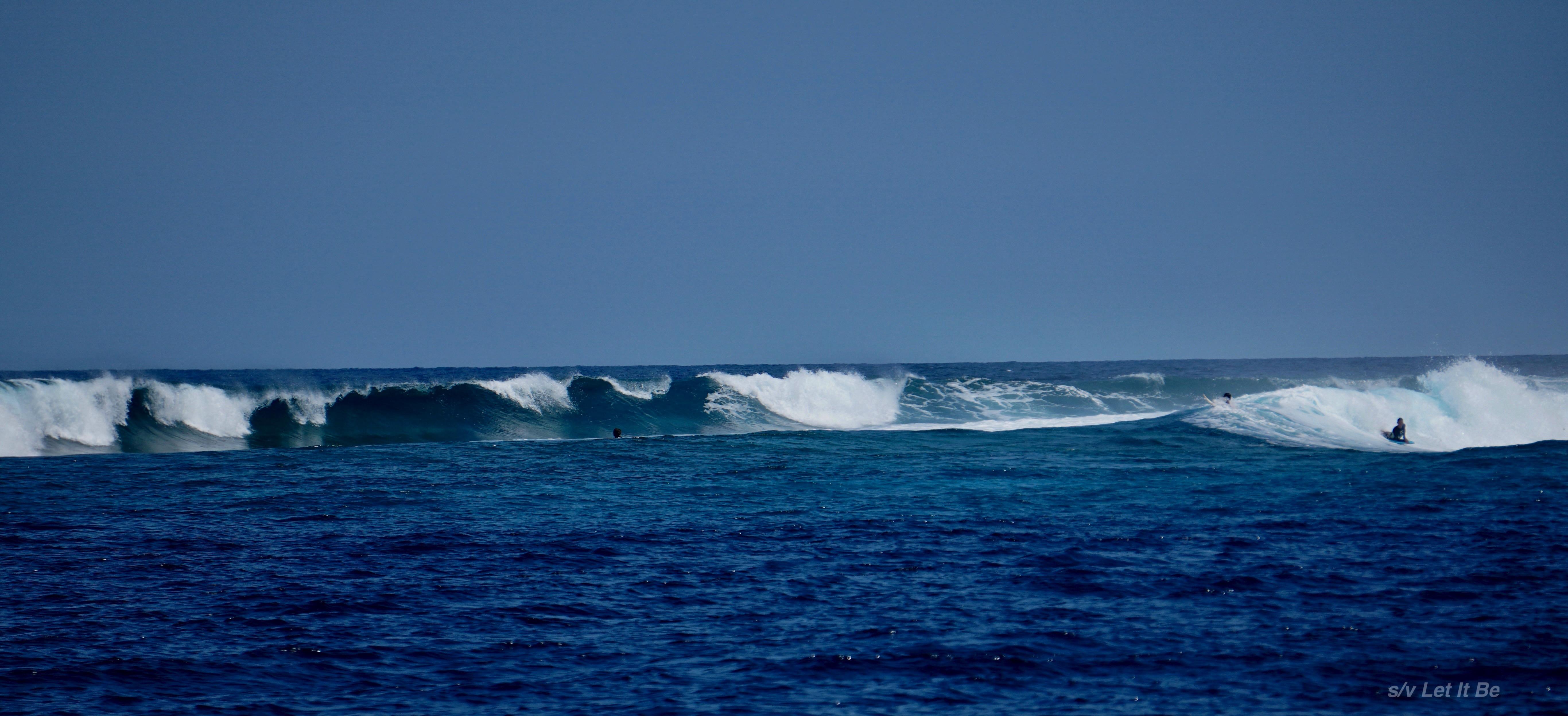 surfs up-1
