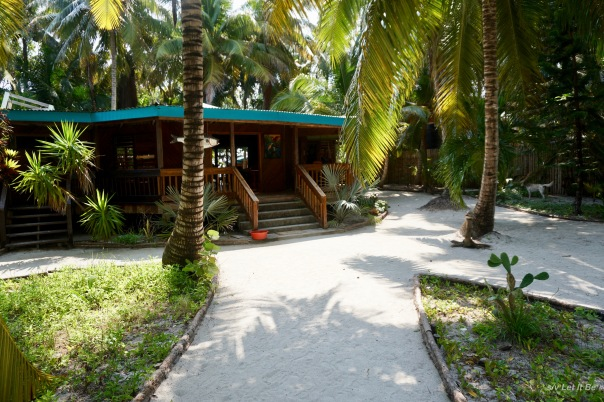 South Water Caye-1