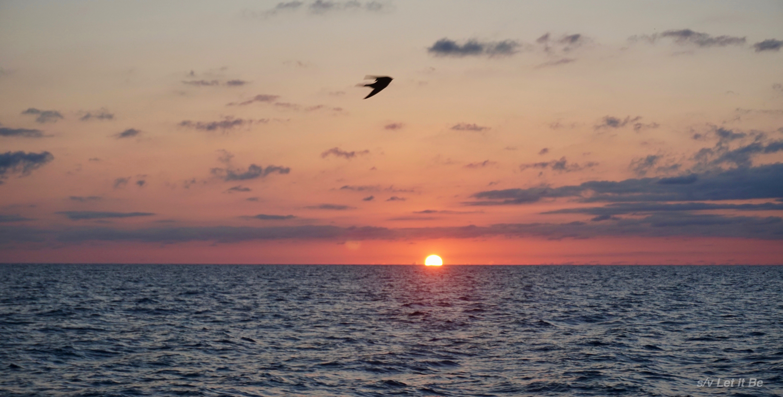 to Galveston.jpg