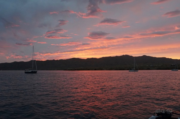 HaHa Turtle bay sunset